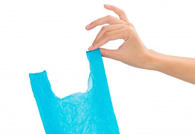 mao-mulher-segurando-reciclado-sacola-plastica-isolado-branco-fundo_41775-952_1577128098.81.jpg